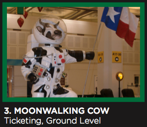 Artwork of MoonWalking Cow at IAH