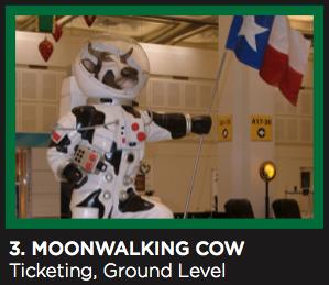 Artwork of MoonWalking Cow at IAH