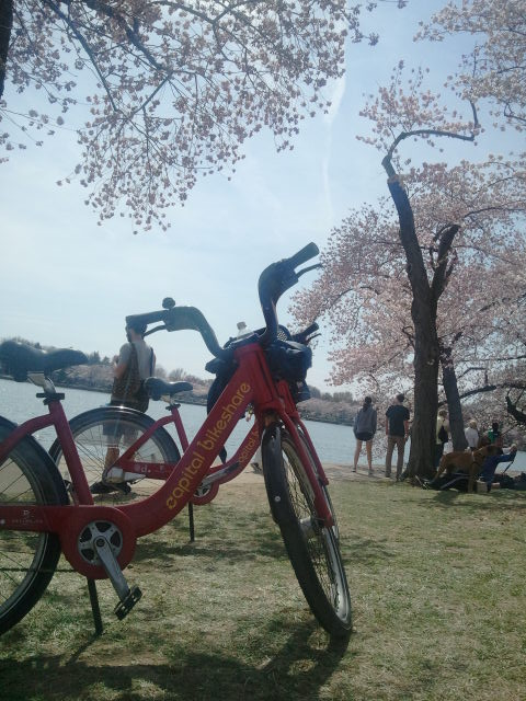 Capital Bikeshare is especially popular on a spring day like today.