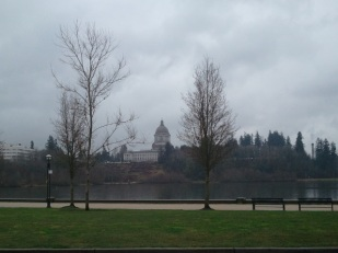 WA State Capital in the Rain