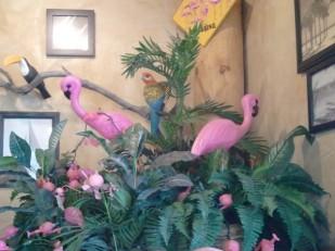 Sunny Daze Cafe flamingos
